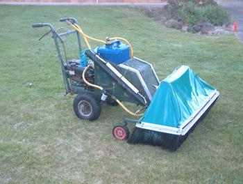 Mount Gambier Locality List  Image . This photo sponsored by Lawn Maintenance and Care Category.