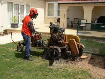 Stump Removals Listing