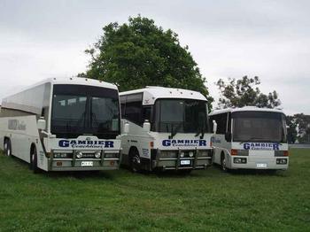 Bus - Tours Listing