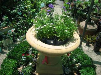 Plant Nursery Listing
